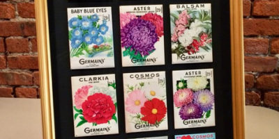 Flower seed packets, shadow box
